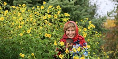Выбирай и сажай: неботаническая классификация многолетников, часть 2