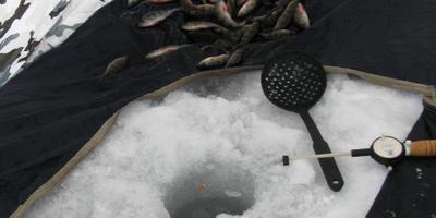 Что видит зимний рыбак в палатке?