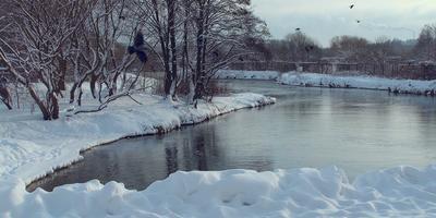 Снежные берега