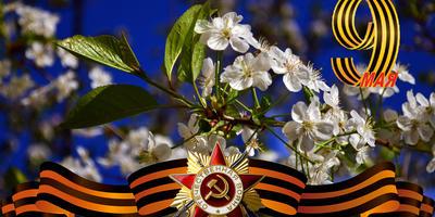 Галерея фотоизбушки: День Победы