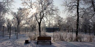 Скамейка в парке, ты сейчас одна.... О чём ты думаешь? О чём сейчас мечтаешь? Ты оживёшь, когда придёт весна....А в этот день, сегодня, ты скучаешь....