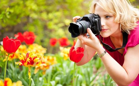 Конкурс дачных фотографий