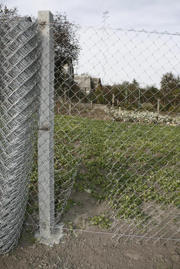 Как и из чего сделать недорогой забор на даче