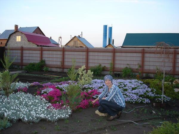 Мы заложили сад