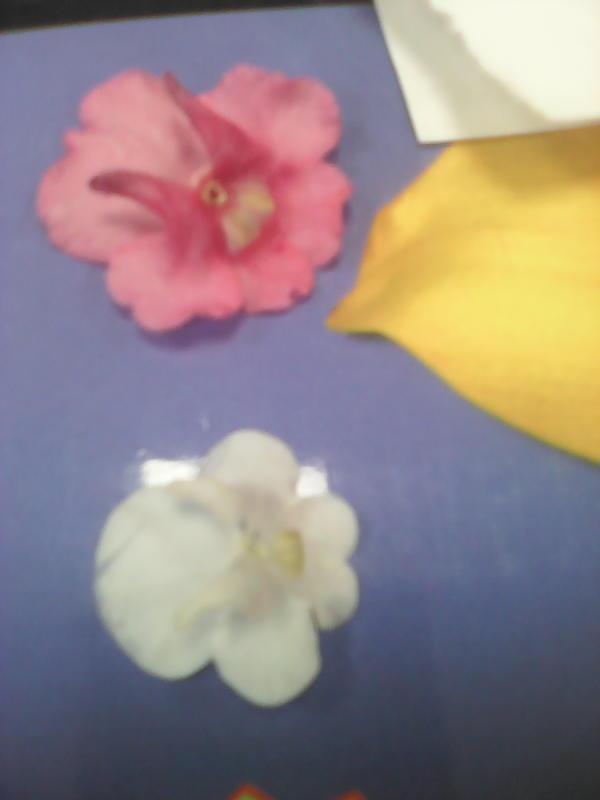 рожки с нижней части цветка
