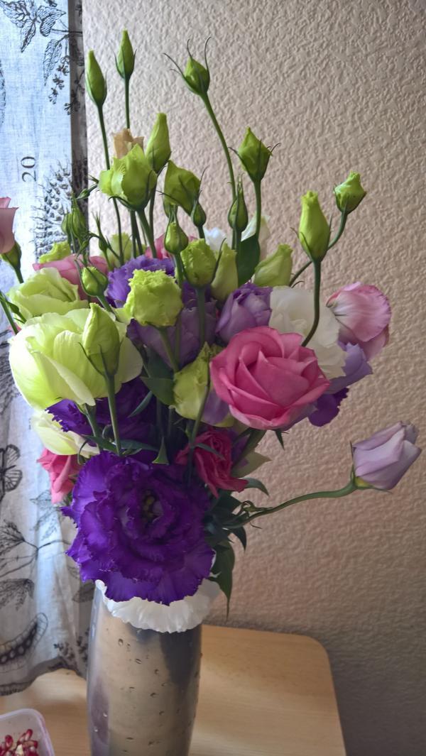 здравствуйте, скажите пожалуйста название этого цветка