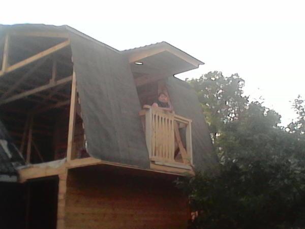 строительство и мой любимый Хомяк.