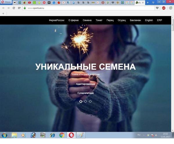 главная страница обманного сайта