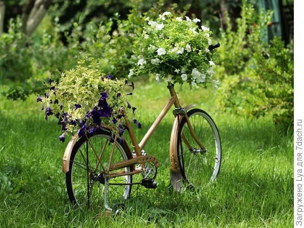клумба из велосипеда