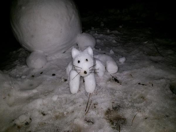 Снежная кошка