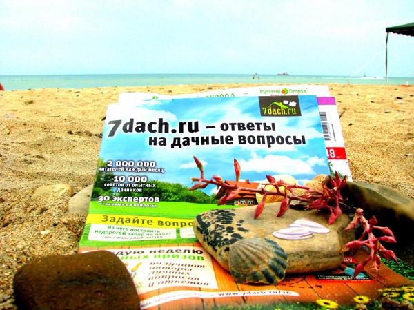 7 Дач на море)