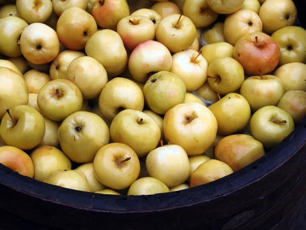 Для мочения яблок лучше использовать деревянные кадки