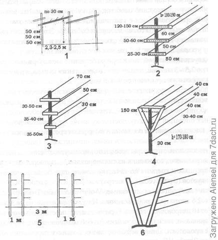 Конфигурация опор для лозы