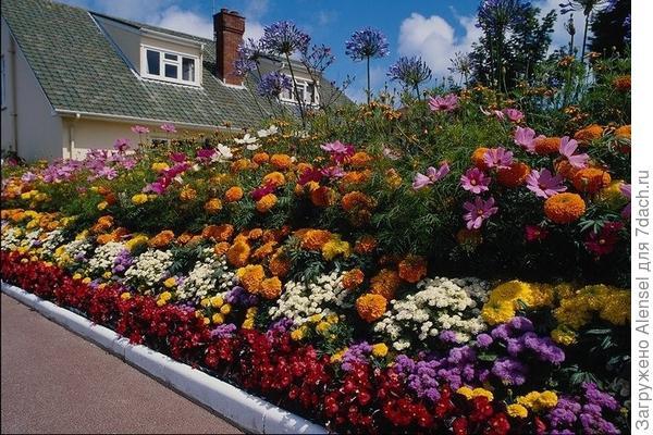 Правильная группировка цветника на даче