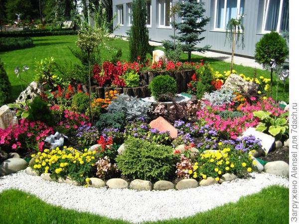 Группировка растений