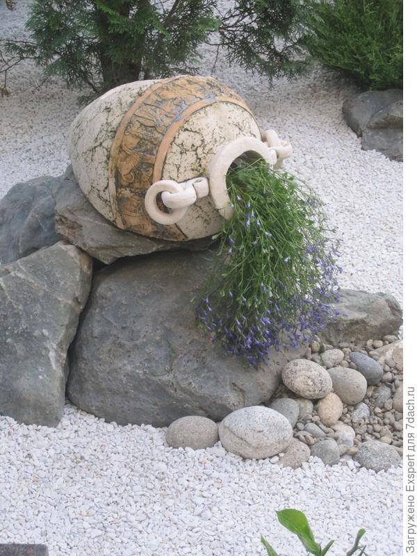 растения для сухого сада