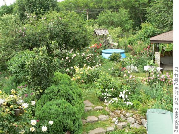 Вид на летний сад
