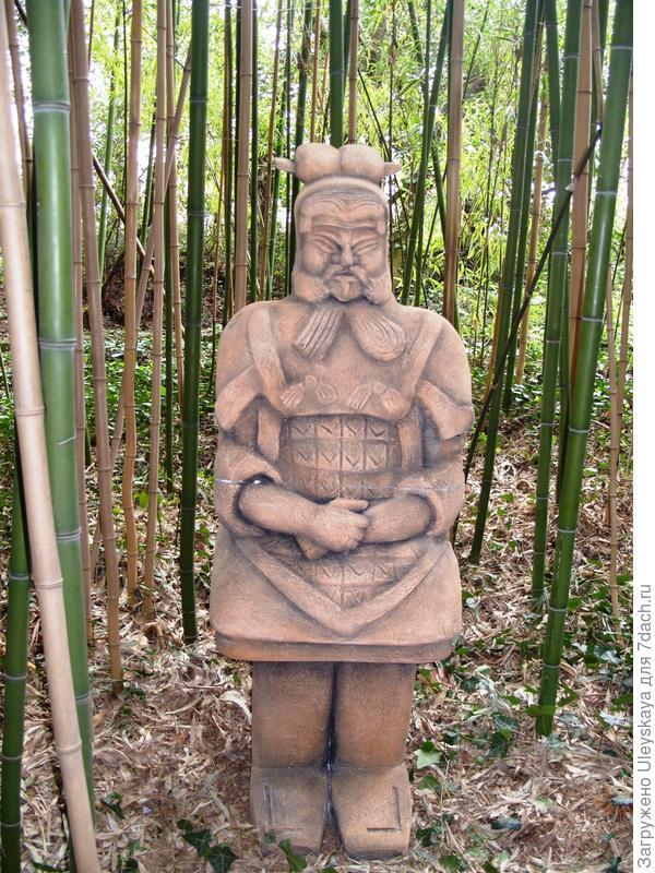 В 100-летней роще бамбука.