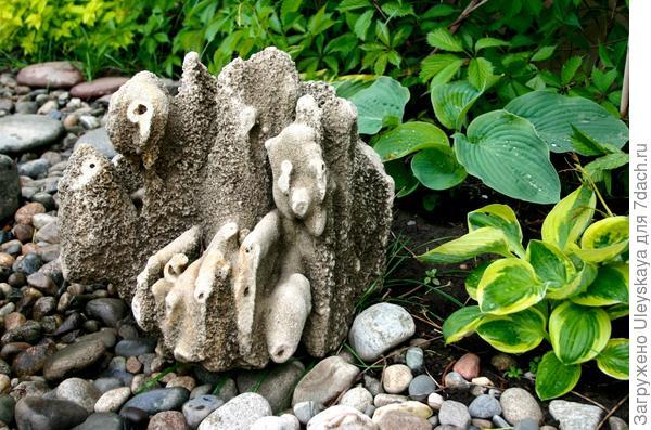 Камень и хосты