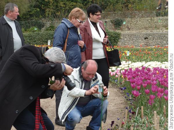 На выставке тюльпанов 5 апреля