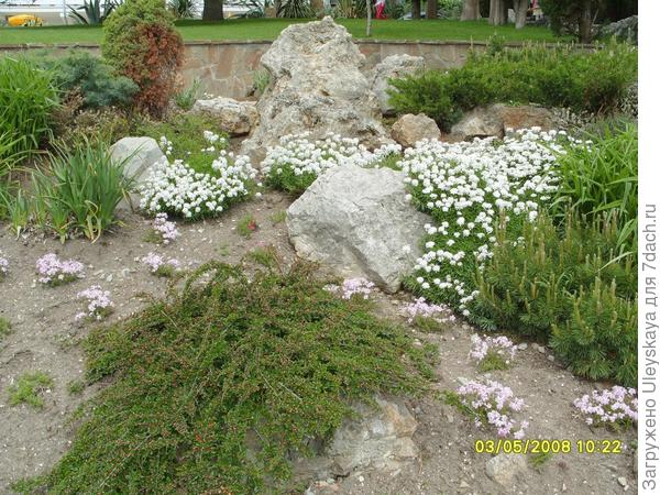 Низкие растения - на переднем плане рокария