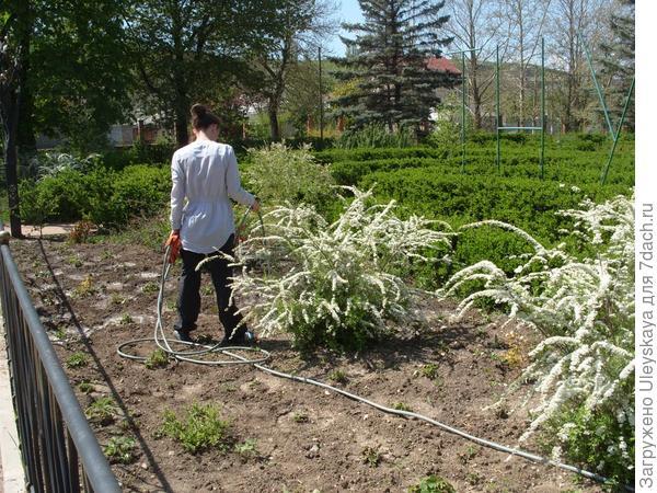В ботаническом саду ТНУ