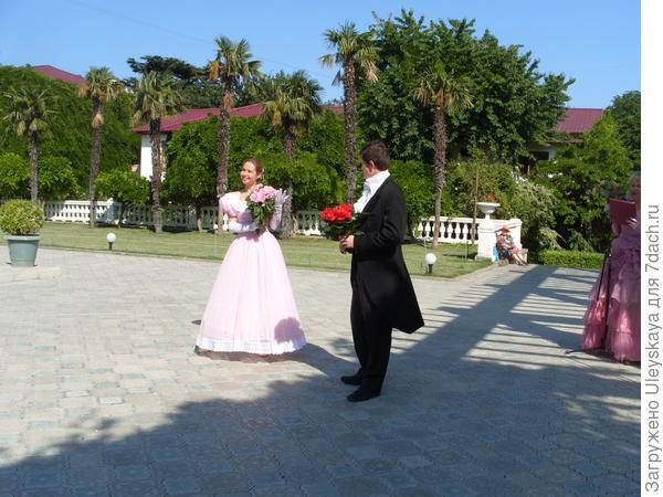 Красная роза - сорт Traviata.