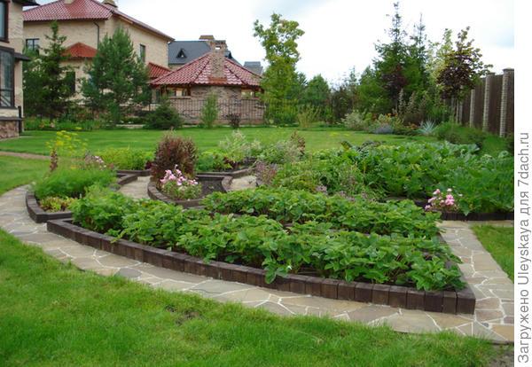 Декоративный огород, пример решения, фото сайта sadogolik.ru