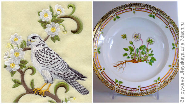 Дриада надрезная на вышитой картине, фото сайта www.emblibrary.com;  ее изображение на тарелке, фото сайта www.floradanicaonline.com
