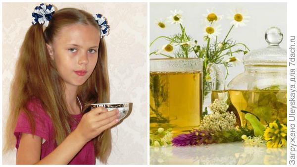 Лиечка за чаем и ее любимый чай из ромашки, фото сайта vk.com