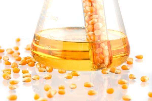 Обработка семян препятствует развитию заболеваний
