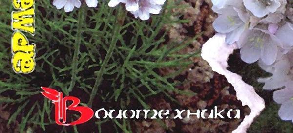 """""""Биотехника"""" - одна из старейших отечественных компаний, производящих семена"""