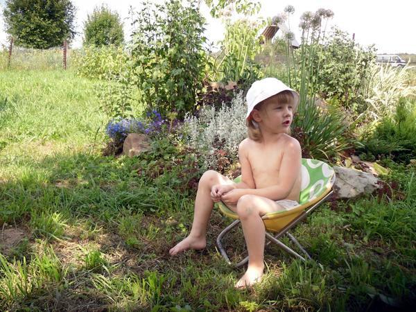 Летний отдых в шезлонге под яблонями