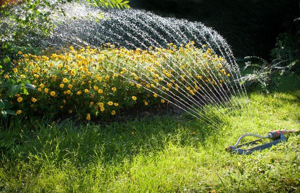 Насос на даче и для полива пригодится, и фонтан соорудить поможет