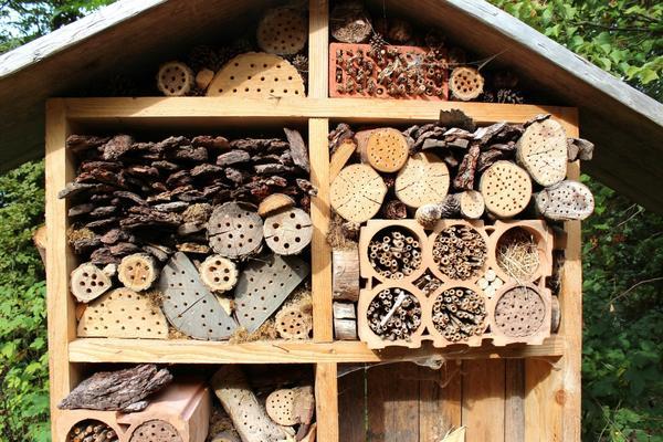 Домик для насекомых
