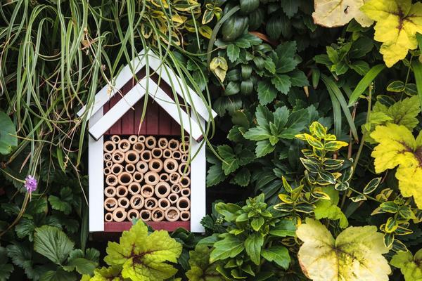 Новый садовый тренд - домики для насекомых