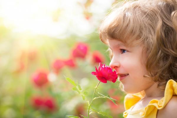 Не все цветы безопасны
