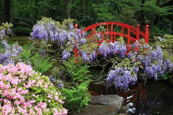 Яркие перила садового моста