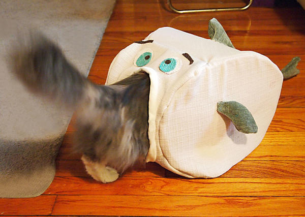 Еще одна рыба, фото с сайта http://cdn.instructables.com