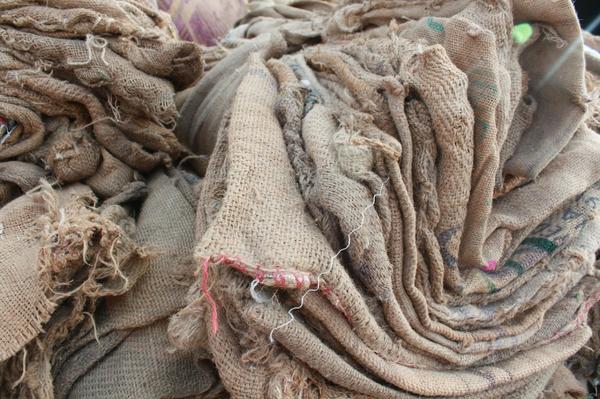 Старые мешки пригодятся для защиты растений от мороза