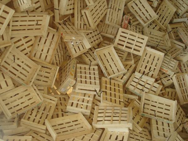 Для защиты растений можно использовать деревянные ящики
