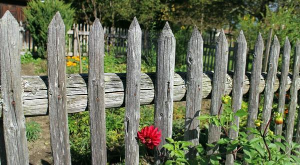 Старый забор может защитить ваши права в земельном споре