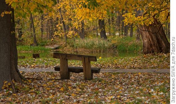 Скамейки и лавочки- уютные обитатели сада