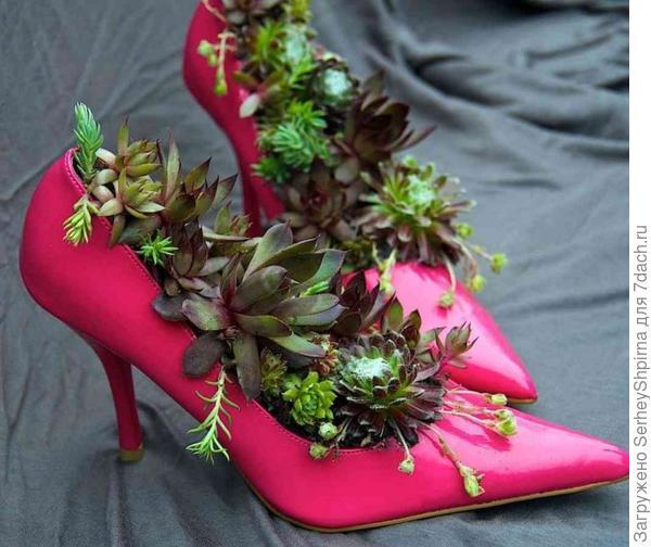 Клумба-туфли