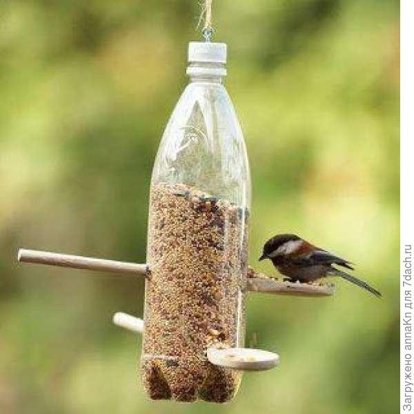 Кормушки для птиц фото оригинальные идеи