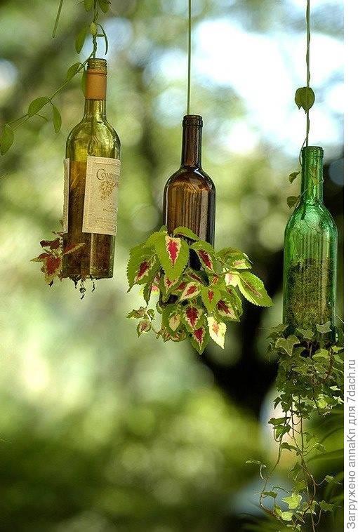 10 идей использования бутылок в саду!