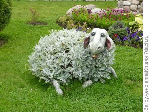 Клумба овечка