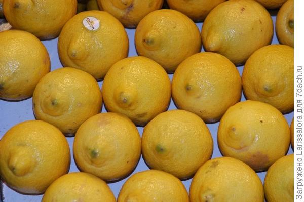 Лимоны для хорошей фигуры