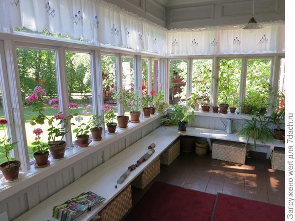 Веранда как домашний сад