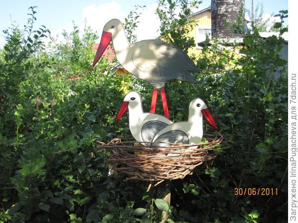 6. Аист свил гнездо на спиленной сливе.